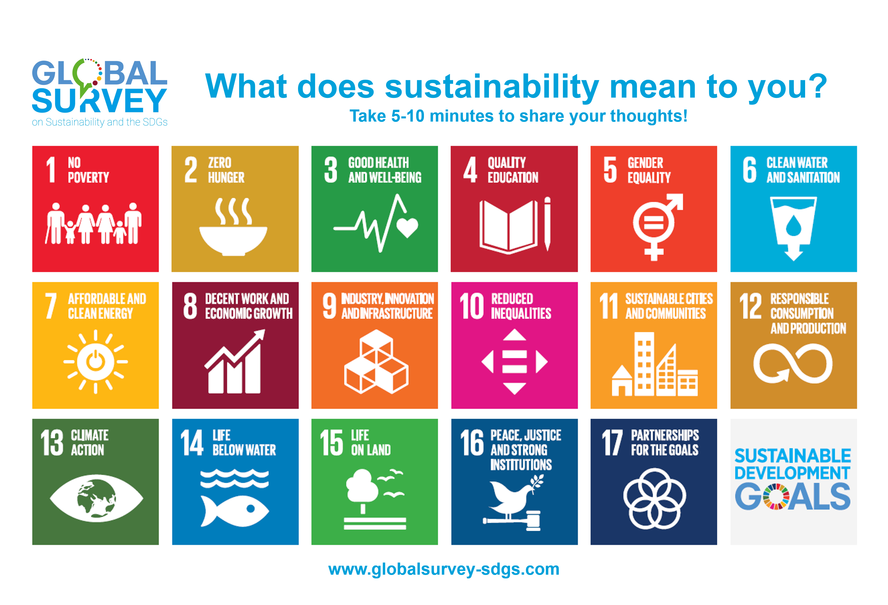 Global Survey graphic including logo and SDGs