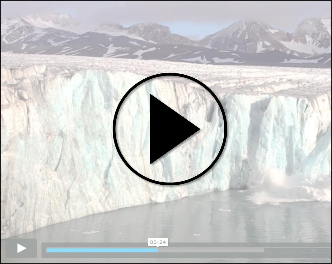 Video Global Survey